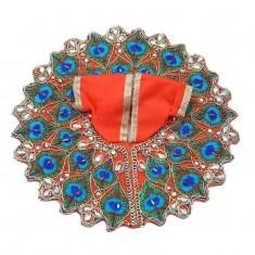 Orange Mor Pankh Stone Work Dress