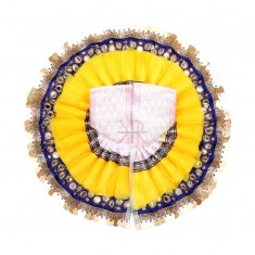 White Yellow Foil Lace Work Dress