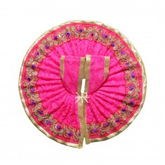 Rani Zari Lace Work Dress